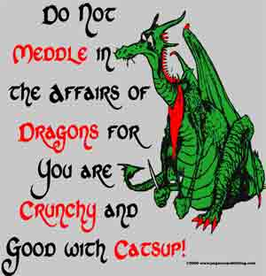 Do Not Meddle in the Affairs of Dragons...