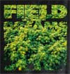 Field of Dreams Weed Shirt