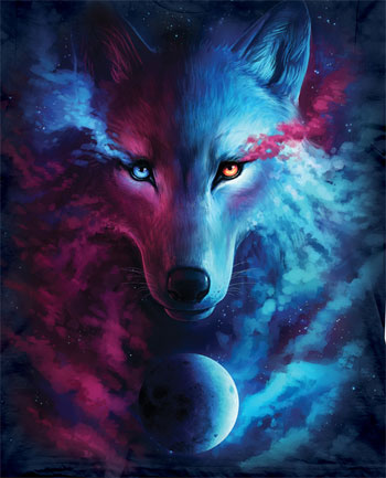 Where Light and Dark Meet Wolf T-Shirt