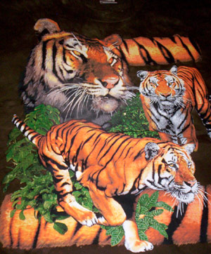 Bengal Tigers Shirt