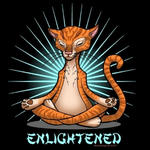 Enlightened Cat T-Shirt