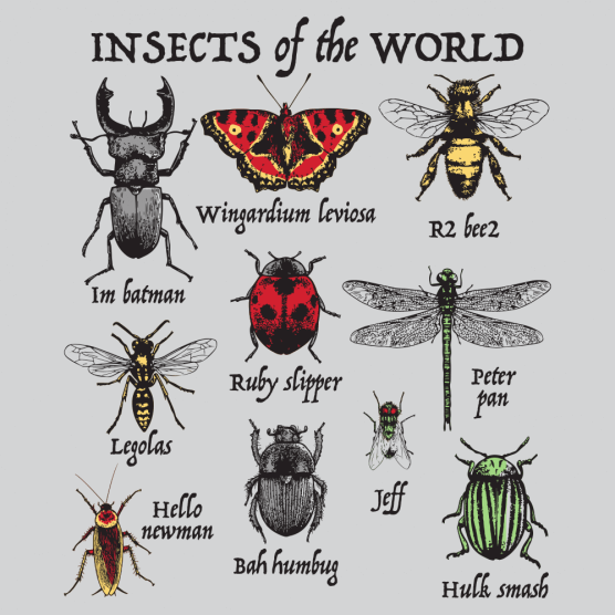 Insects of the World T-Shirt